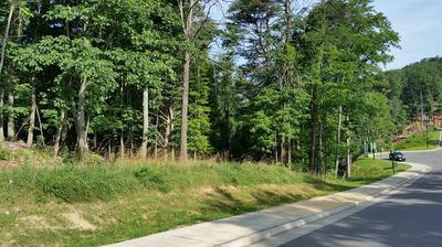 4945 SOUTH PEAK CT, Roanoke, VA 24018 - Photo 2