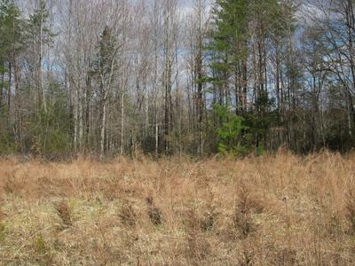 LOT 5 HATCHETT RD, Penhook, VA 24137 - Photo 2