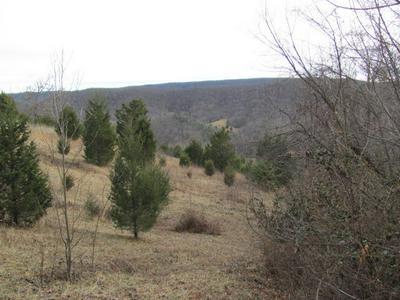 0 BLACKSBURG RD, Catawba, VA 24070 - Photo 1