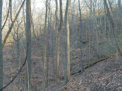 10 TIMBER TRAIL LN, Hardy, VA 24101 - Photo 2