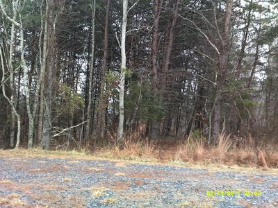 LOT 62 MOUNTAIN VISTA CIR, Moneta, VA 24121 - Photo 1
