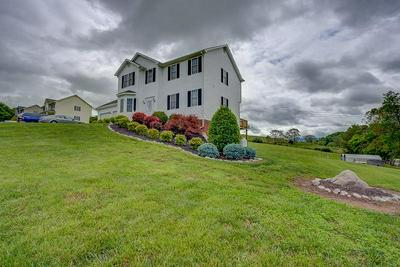 24 GOAD RD, Fincastle, VA 24090 - Photo 2