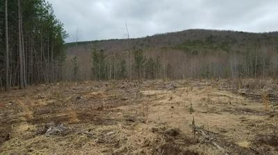 TRACT 4 COOPERS MOUNTAIN RD, Martinsville, VA 24112 - Photo 2