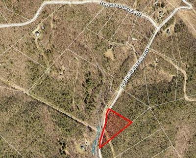 LOT 3 POOR MOUNTAIN RD, Bent Mountain, VA 24059 - Photo 2