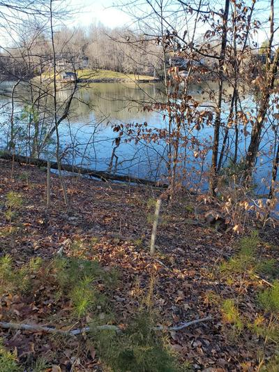 LOT 34 WATERSIDE CHANNEL DR, Goodview, VA 24095 - Photo 1