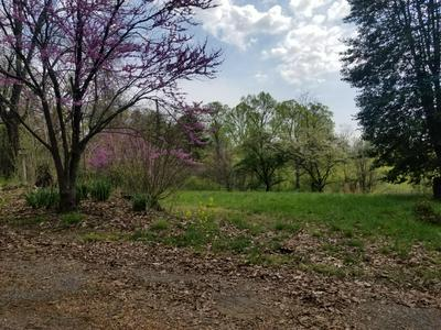 1071 MURRAY HOLLOW RD, Thaxton, VA 24174 - Photo 2