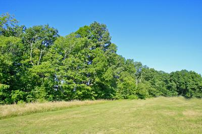 LOT 1 RUCKER RD, Moneta, VA 24121 - Photo 1