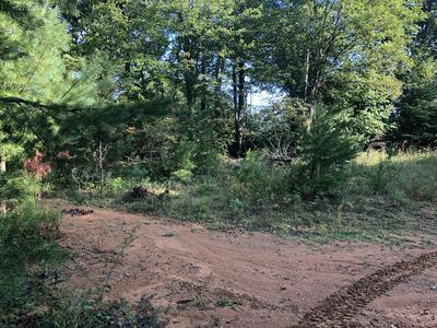 0 PATTERSON DR, Bent Mountain, VA 24059 - Photo 2
