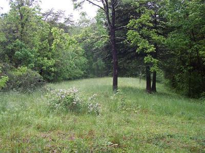 141 NEWCOMB LN, Buchanan, VA 24066 - Photo 1