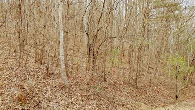 0 RIDGEFIELD LN, Ferrum, VA 24088 - Photo 1