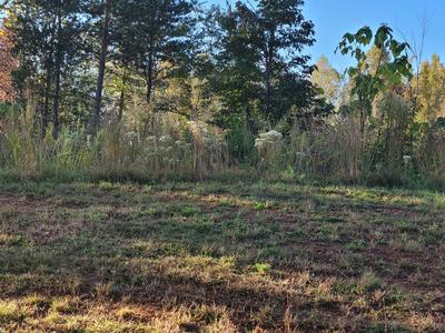 LOT 19 JFK BLVD, Union Hall, VA 24176 - Photo 1