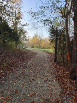 0 MAIER FARM RD, Buchanan, VA 24066 - Photo 2