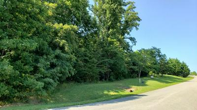 LOT 15 &16 INDEPENDENCE LN, Wirtz, VA 24184 - Photo 2