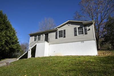 563 ARCH MILL RD, Buchanan, VA 24066 - Photo 2