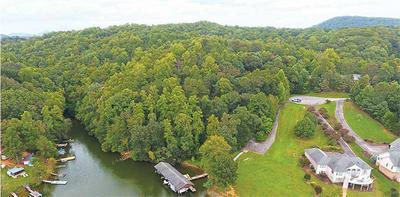 LOT 11 LAKES EDGE DR, Goodview, VA 24095 - Photo 1