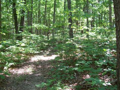 0 POWELL RD, Buchanan, VA 24066 - Photo 1