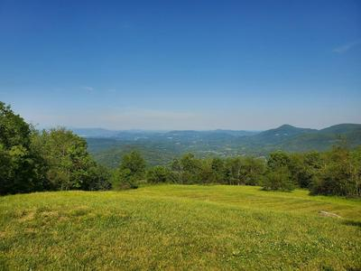 8380 WILLETT LN, Bent Mountain, VA 24059 - Photo 1