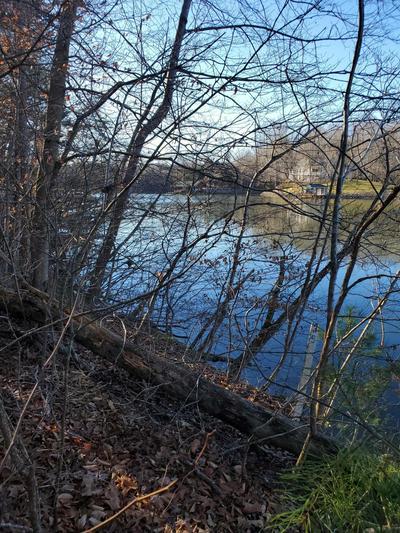 LOT 34 WATERSIDE CHANNEL DR, Goodview, VA 24095 - Photo 2