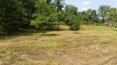 LOT 3 BLACKSBURG RD, Troutville, VA 24175 - Photo 2
