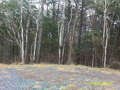 LOT 62 MOUNTAIN VISTA CIR, Moneta, VA 24121 - Photo 2