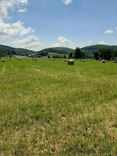 9651 BENT MOUNTAIN RD, Bent Mountain, VA 24059 - Photo 2