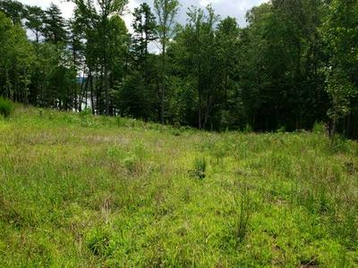 LOT 22 JFK BLVD, Union Hall, VA 24176 - Photo 2