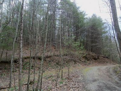 0 LICK RIDGE RD, Check, VA 24072 - Photo 2