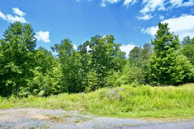 2 BLUE HERON RD, Wirtz, VA 24184 - Photo 1