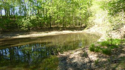 TRACT 9 DUSTY LN, Martinsville, VA 24112 - Photo 1