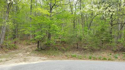 1 PURGATORY MOUNTAIN RD, Buchanan, VA 24066 - Photo 1