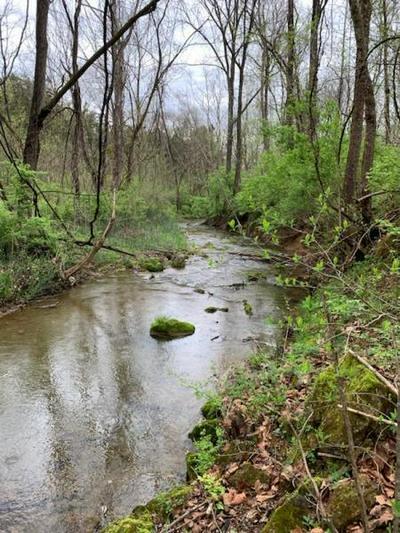 0 LEE HWY, Buchanan, VA 24066 - Photo 1