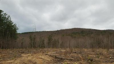 TRACT 4 COOPERS MOUNTAIN RD, Martinsville, VA 24112 - Photo 1