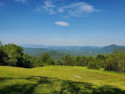 8380 WILLETT LN, Bent Mountain, VA 24059 - Photo 2