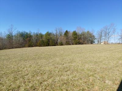 10 LOST MOUNTAIN RD, Wirtz, VA 24184 - Photo 1