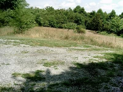LOT 58 MOUNTAIN VISTA CIR, Moneta, VA 24121 - Photo 1