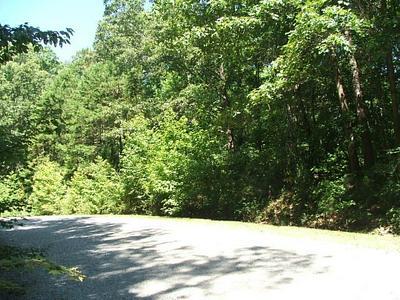 6 SANDIE PT, Clarksville, VA 23927 - Photo 2