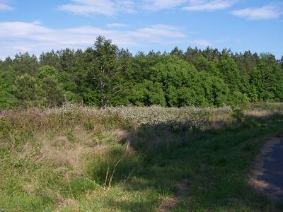 61 BATES LANE # 61, Macon, NC 27551 - Photo 2