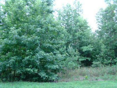 5 ACRES LOT# 13 MUSCADINE TRAIL, Baskerville, VA 23915 - Photo 2