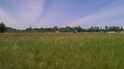 0 WALLACE FORK RD, Weldon, NC 27890 - Photo 1