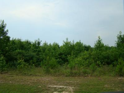 5 ACRES LOT #6 MUSCADINE TRAIL, Baskerville, VA 23915 - Photo 2