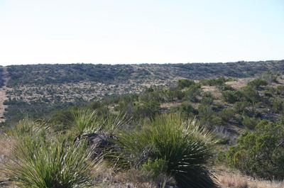 0 HWY 189, Sonora, TX 76950 - Photo 1