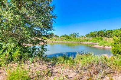 0 COUNTY RD 146, Coleman, TX 76834 - Photo 1