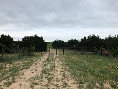 0 N COUNTY RD 146, WINTERS, TX 79567 - Photo 2