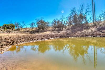 0 COUNTY RD 196, Tuscola, TX 79562 - Photo 1