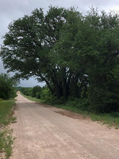 0 N COUNTY RD 146, WINTERS, TX 79567 - Photo 1