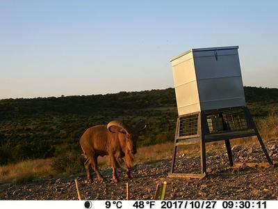 0 HWY 189, Sonora, TX 76950 - Photo 2