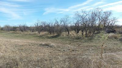4901 OTHER, Millersview, TX 76862 - Photo 2