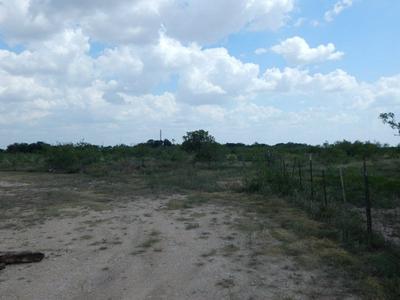 0 COUNTY RD 414, ELDORADO, TX 76936 - Photo 1