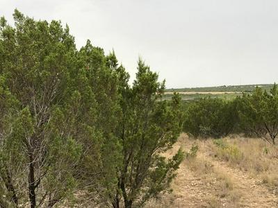 20004 CHOCTAW RIDGE, Paint Rock, TX 76866 - Photo 2