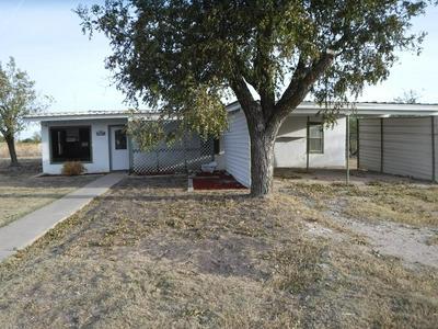 114 S MULBERRY ST, Eldorado, TX 76936 - Photo 1